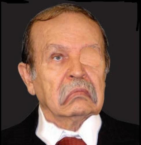 bouteflika,pouvoir,algerie,président,parti